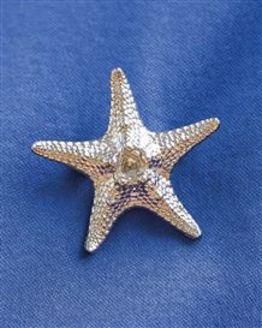 Starfish Pewter Brooch